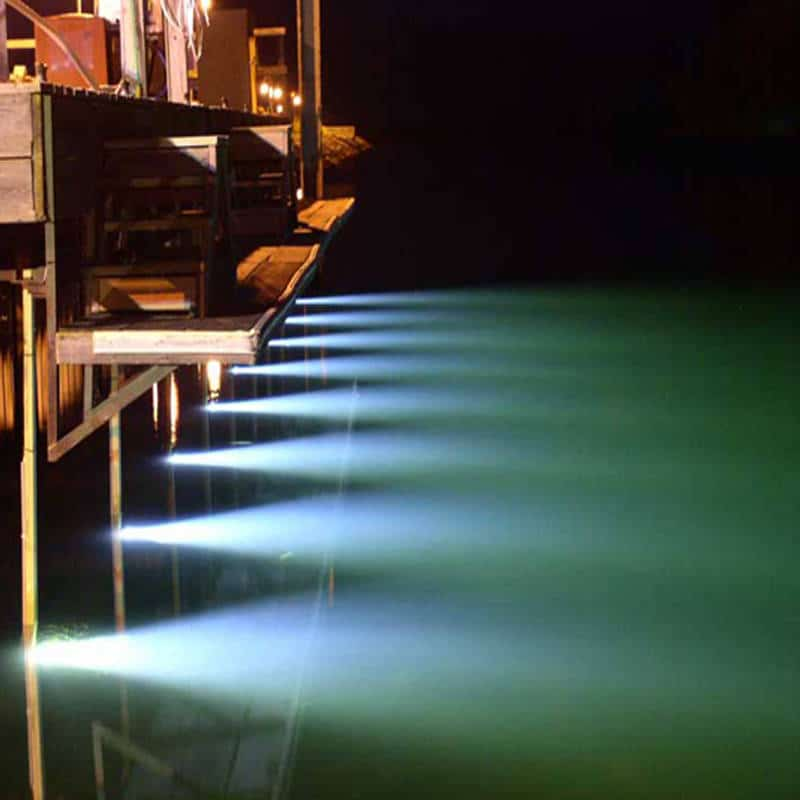 led sea-vue underwater dock lights - turn on the power!, Reel Combo