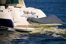 Dinghy Davits – Did you Know?