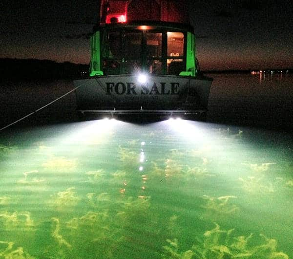 Led underwater boat lights the ultimate in lighting for Best light for night fishing