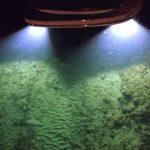 LED Sea-Vue Underwater Boat Lights