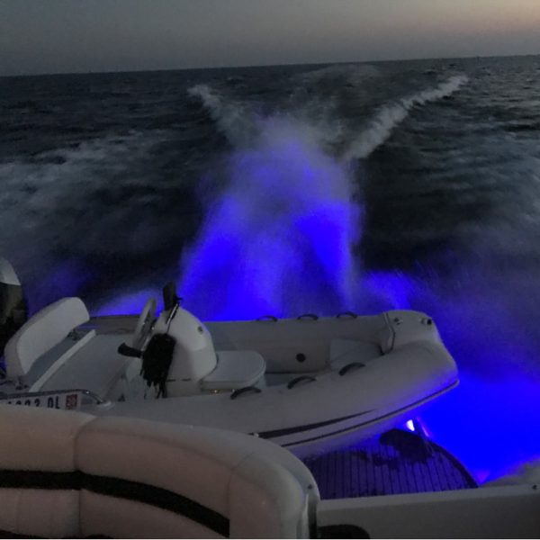 LED Sea-Vue™ Light Package